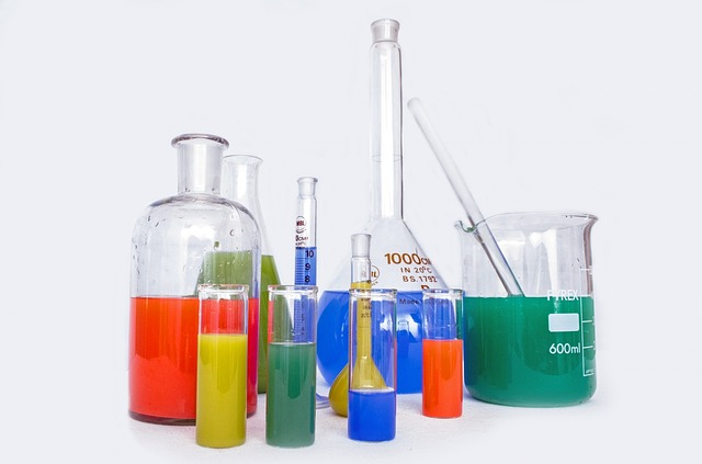Workshop on Identifying Emerging Risks from Chemicals